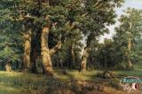 Shishkin I.I.'s the best Pictures